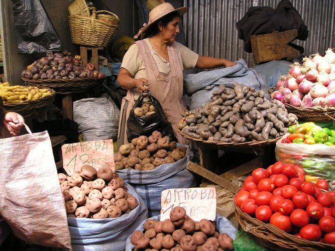 mercado_bolivia_1